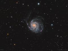 M101 - Pinwheel Galaxy - LRGB (cfaobam) Tags: ccdt67 moravian g28300 lodestar losmandyg11 littlefootphoto pixinsight astronomie deepsky goto deutschland germany astrophoto astrofoto bayern astrofotografie cfaobam astronomy telescope teleskop odenwald obernburg miltenberg aschaffenburg m101 pinwheel galaxy feuerrad spiralgalaxie ts10f4 ontc newtonontc newtonontcnewton1000mm aplanatickomakorrector moraviang28300 g28300moravian g28300fw astrodon astrophotography messier