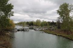 Princes island park Calgary (davebloggs007) Tags: princes island park calgary