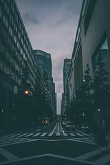 Tokyo Metropolitan Government Building (Tocho), Tokyo, Japan (Mefi.) Tags: mefi canoneos7d épületek tokió japán sigma1020mmf35exdchsm japan tokyo flickr buildings