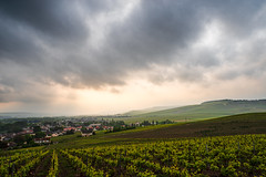 Atmosphere (ZeGaby) Tags: clouds landscape mareuilsuray naturephotography paysage paysagedechampagne pentax2470mm pentaxk1 sun vignobles vineyards aÿchampagne marne france