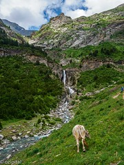 Ordesa Monte Perdido-4 (ozipital) Tags: europe monteperdido ordesa pyrenees spain landscape mountains nationalpark scenery