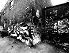 Mile-End Graffiti (Montreal) (MassiveKontent) Tags: graffiti streetart bwphotography streetshot lines montreal bw contrast city monochrome urban blackandwhite streetphoto montréal quebec canada photography concrete shadows noiretblanc gopro absoluteblackandwhite mono blackwhite blancoynegro