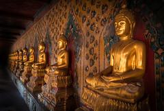 Infinite Line of Buddhas (Samuel Gmehlin) Tags: bangkok thailand watarun temple buddha depthoffield 曼谷 泰国 黎明寺 寺庙