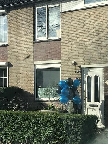 Heliumballonnen Metallic Zwart en Blauw Spijkenisse