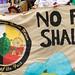 DNC march clean energy (4)