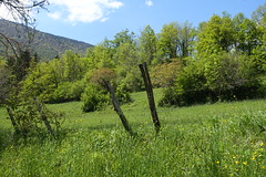 Hike to Vallée du Laudon (*_*) Tags: 2019 printemps spring afternoon may hiking mountain montagne nature randonnee walk marche europe france hautesavoie 74 annecy saintjorioz laudon bauges circuitdulaudon loop valléedulaudon savoie