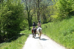 Horse riders @ Hike to Vallée du Laudon (*_*) Tags: 2019 printemps spring afternoon may hiking mountain montagne nature randonnee walk marche europe france hautesavoie 74 annecy saintjorioz laudon bauges circuitdulaudon loop valléedulaudon savoie equitation horse