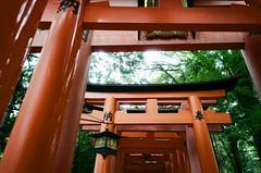 大阪京都3-16 (The_Can) Tags: 2019 may osaka kyoto can taiwan film gr1s 28mm c200 travel