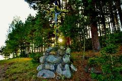 2012-10-02 okolice Loryńca  (129) (aknad0) Tags: polska loryniec krajobraz las drzewa krzyż