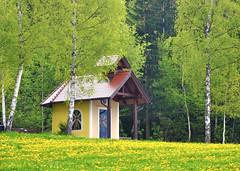 Waldkapelle (Mariandl48) Tags: kapelle wald wiese