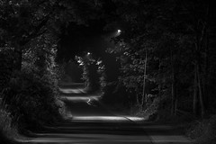 (amylynn95) Tags: blackandwhite bw monochrom night streetlights dark mood nikond800 nikkor nikon