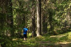 polkujuoksua Puijolla 7 (VisitLakeland) Tags: finland kuopio kuopiotahko lakeland puijo puijonaturepark juoksija juosta luonto maisema nature naturepark outdoor polku polkujuoksu pth run running scenery spring