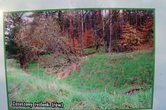 2012-10-02 okolice Loryńca  (137) (aknad0) Tags: polska loryniec informacja krajobraz zdjęcia
