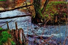2012-10-02 okolice Loryńca  (134) (aknad0) Tags: polska loryniec informacja krajobraz zdjęcia