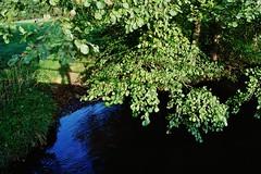 2012-10-02 okolice Loryńca  (145) (aknad0) Tags: polska wda krajobraz rzeki drzewa