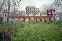 Athens, Greece. (wojszyca) Tags: fuji tiara zoom dl 35mm compact lomography color negative 100 city urban decay athens greece mural streetart overgrown abandoned
