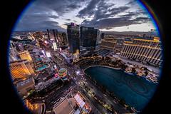 Las Vegas-1 (coopertje) Tags: unitedstates usa nevada las vegas verenigde staten vs thestrip boulevard casino architecture evening night lights america amerika bellagio sinncity