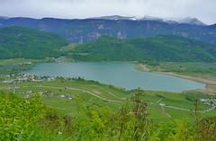 _DSF9754 (mar.colla) Tags: lago caldaro castelvecchio lagodicaldaro stradadelvino altoadige