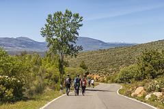 Sin ruedas (lebeauserge.es) Tags: cerveradebuitrago madrid españa naturaleza campo atazar gente personas carretera