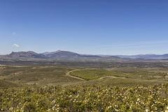 Sierra del Rincón (lebeauserge.es) Tags: cerveradebuitrago madrid españa naturaleza campo atazar montaña cielo nubes