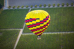 All The Excuses About How She Never Loved Him (Thomas Hawk) Tags: california napa napavalley usa unitedstates unitedstatesofamerica yountville balloning balloon hotairballoon hotairballooning vineyard
