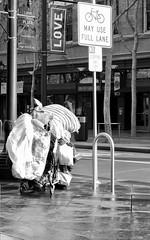 Love This Place (AlainC3) Tags: amour love streetsign signalisation rue pauvreté poverty sanjose californie california bicyclette bicycle nikoncoolpixp600