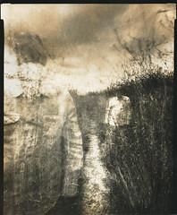 And The Road Goes On Forever (micalngelo) Tags: analog papernegative pinhole pinholecamera pinholephotography 8x10pinhole largeformatpinhole sepiatoned ilfordwarmtonepaper toycamera toycameraphotography