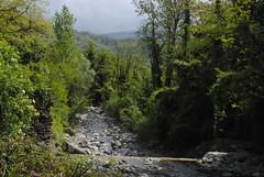 Il Glicine e La Lanterna (Elizabeth Almlie) Tags: italy toscana tuscany vignola agriturismo ilglicineelalanterna forest river rocks water