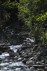 Il Glicine e La Lanterna (Elizabeth Almlie) Tags: italy toscana tuscany vignola agriturismo ilglicineelalanterna river rocks water trees