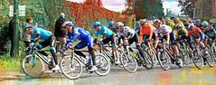 Plongée vers l'allée des Bouleaux et le bas de la côte des Forges, Dolembreux, Liège-Bastogne-Liège 24/04/2019 (claude lina) Tags: claudelina belgium belgique belgië vélo bike course coursecycliste race liègebastogneliège classique monument sprimont dolembreux louveigné