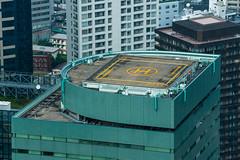 DSC_0022 (Adrian De Lisle) Tags: asia city cityscape helipad japan shinjuku tokyo tokyometropolitangovernmentbuilding towers shinjukuku tōkyōto