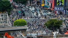 DSC_0048 (Adrian De Lisle) Tags: asia city cityscape crosswalk crowd japan people shibuya shibuyacrossing shibuyahikarie tokyo train trainstation shibuyaku tōkyōto