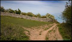 190515-4513-M50.JPG (hopeless128) Tags: fields sky wall cheddargorge uk 2019 cheddar england unitedkingdom