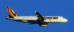 TigerAir Airbus A320-232 VH-VNG (Johan Ramerman) Tags: tigerair airbus a320 adelaide southaustralia johanramerman