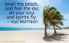 Beach Captions-for Instagram (hiquotes) Tags: beach captions picture instagram quotes funnybeachcaptions instagramcaptions