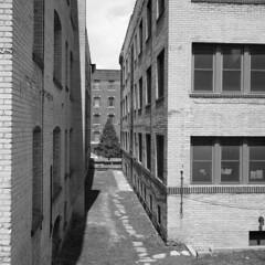 untitled1 (kaumpphoto) Tags: rolleiflex 120 tlr ilford street urban city bw black white building brick minneapolis tree pine stone window shadow