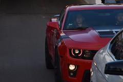 016 (Car_Spotter_SCII) Tags: nortonzlone 2013 camaro zl1 supercarsunday vredestein zandvoort gmtecmeeting2019 gmtec oudbeijerland red carsandcoffee dusseldorf düsseldorf twente