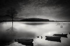 (^^) (* landscape photographer *) Tags: lake sky tree sunset reflections blackandwhite cloud nature landscape