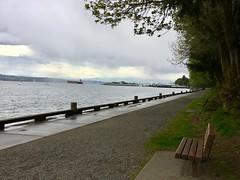 Shoreline at Owen Beach (MediaDoggie) Tags: owenbeach tacoma wa