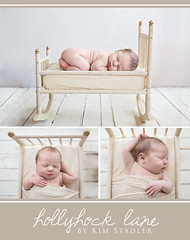 7R4A5858web (kim stadler) Tags: kim stadler photography hollyhock lane photographer spokane washington newborn baby baseball hat antique bed vintage cradle doll newbron