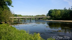 The River Ribble, Preston. (peterileypics) Tags: river ribble preston lancashire scenery nature lightroom summer sunshine sun