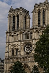 Notre Dame (sue_nurmi) Tags: notredame paris