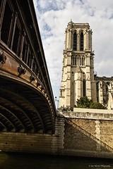 Pont au Double and Notre Dame (sue_nurmi) Tags: bridge notredame