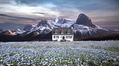 Field Of Flowers (jarr1520) Tags: landscape sky clouds mountains snow afternoon house smoke composite textured field flowers light trees