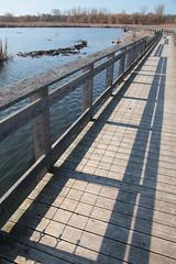 Boardwalk Shadows (peterkelly) Tags: canon 6d digital northamerica ontario canada pointpeleenationalpark marshboardwalk boardwalk wooden wood railing water marsh shadows shadow