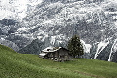 contrast (LG_92) Tags: grindelwald switzerland schweiz alps hütte house building barn wooden grass green mountain rocky snow tree old outdoor hiking 2019 may spring nikon dslr d3100 hill