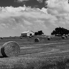 Bales in the Field (N87 Photography) Tags: oklahoma clouds cloudscape rural country countryroad countryside barn hay bale farming farm cattle ranch trees field sky landscape