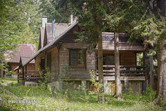Wooden house in the forest, Russia (Phuketian.S) Tags: forest woodenhouse loghouse outdoor cottage light log terrace country village tree nature дом дача деревянный свет россия москва phuketian деревня природа лес russia moscow