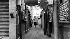 Back to the alley (Go-tea 郭天) Tags: pékin républiquepopulairedechine street urban city outside outdoor people candid bw bnw black white blackwhite blackandwhite monochrome naturallight natural light asia asian china chinese shandong canon eos 100d 24mm prime alley hutong narrow ladies women 2 lonely walls lines alone bricks young winter decoration new year celebration electric cables electricity walk walking movement stand standing wait mobile phone waiting cell cold cellphone cellular old ancient history historic