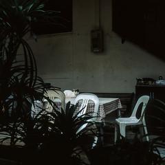 Jurong West (alkanphel) Tags: hasselblad 501cm zeiss planart2880cfe film analog mediumformat 6x6 120 e6 fujifilm fujichrome provia100f rdpiii urban